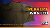 PERVERT WANTED GRAPHIC