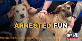 LONG PAW OF THE LAW HELPS OUT