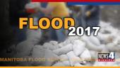 flood graphic