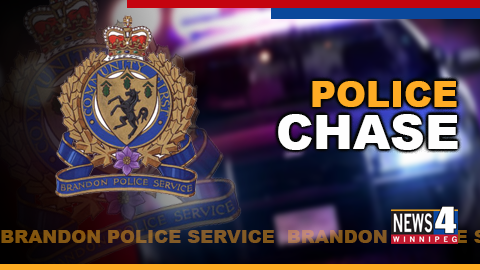 POLICE CHASE GRAPHIC