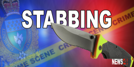 Man repeatedly stabbed after investigating garage break-in