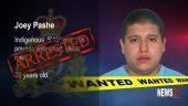 Pache arrest graphic