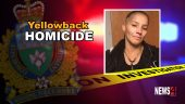 Yellowback homicide graphic