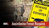 Assiniboine Forest reopens Graphic