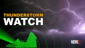 Thunderstorm watch graphic
