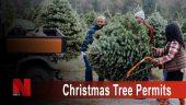 Christmas Tree Permits