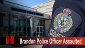 Brandon Police Officer Assaulted