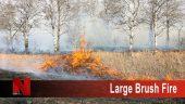 Large Brush Fire
