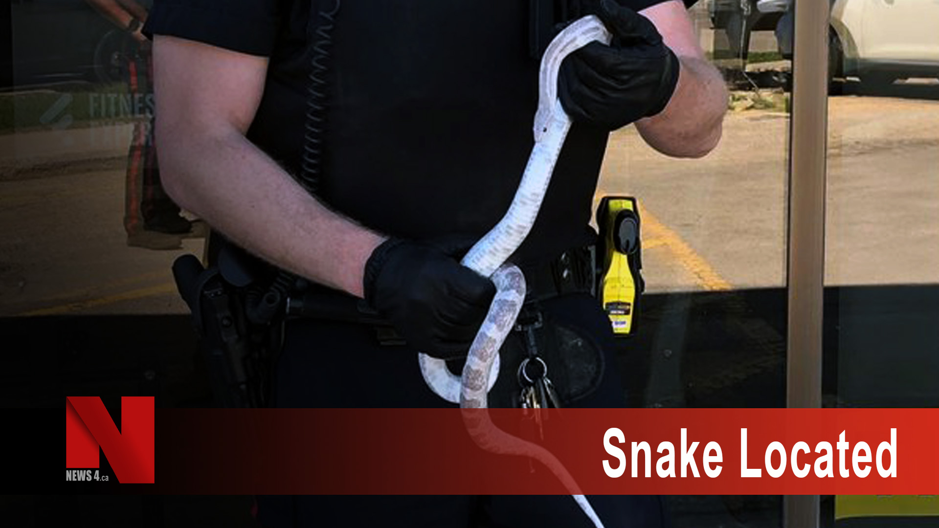Snake Located