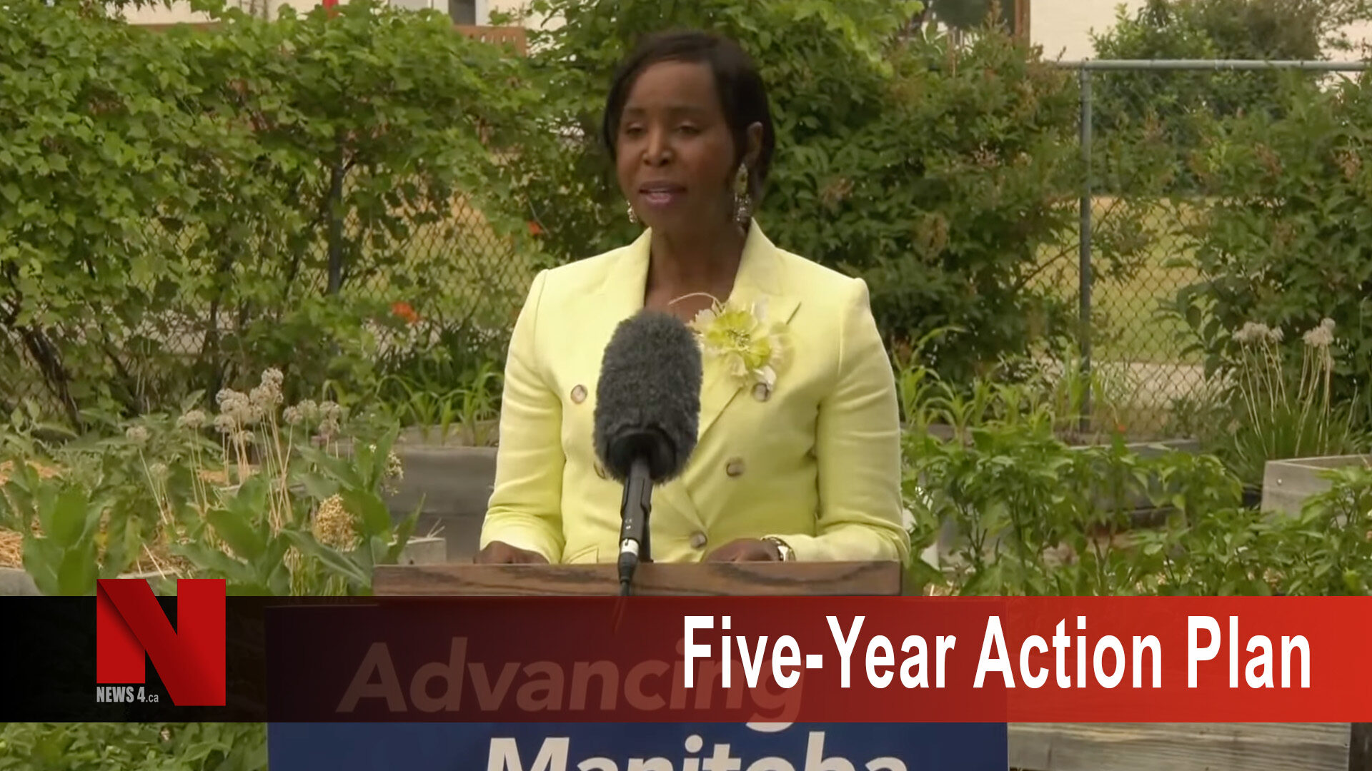 five-year action plan